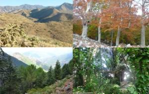 ecosistemas_web