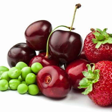 Proyecto que retrasa la maduración de frutas de exportación presenta óptimos resultados